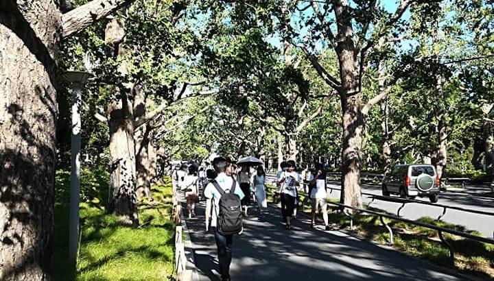 慶応義塾大学での授業協力(2018年7月)